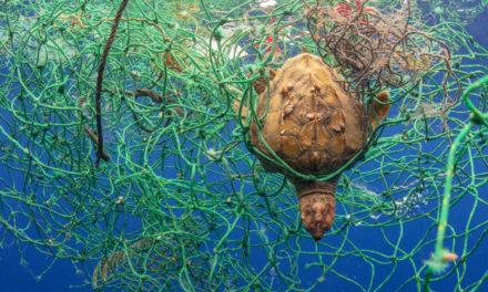 El fotógrafo Sergio Hanquet agita conciencias contra el plástico con una exposición en Londres